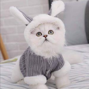 Pets Fur Coat